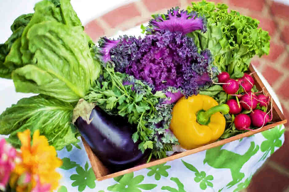 Online Vegetable Garden Course